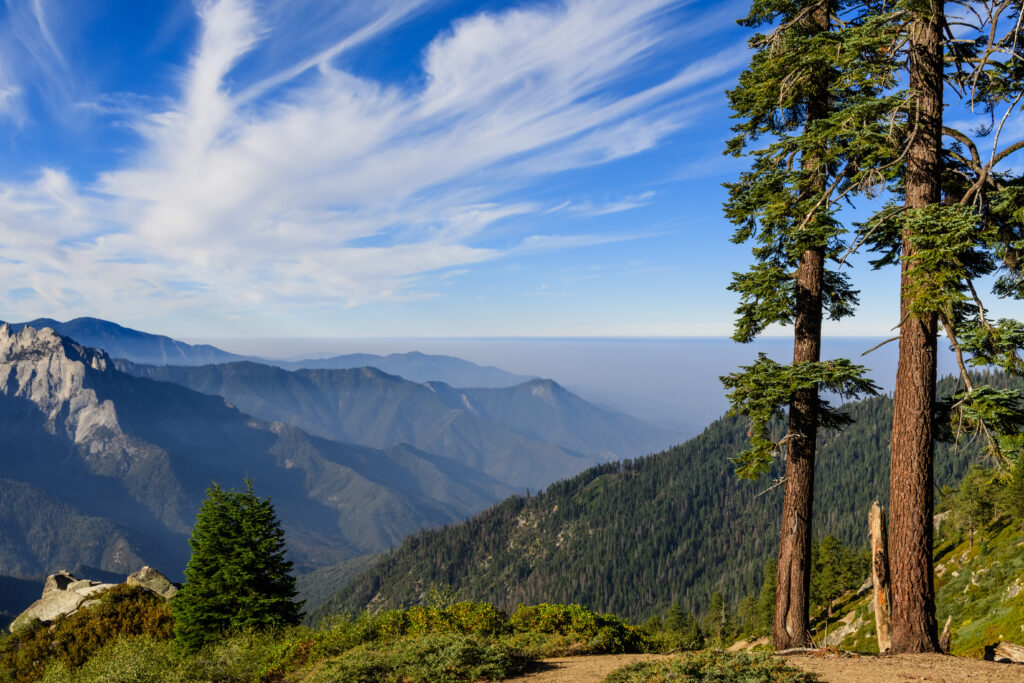 Landscape in Sequoia National Park in Sierra Nevada mountains on a sunny day