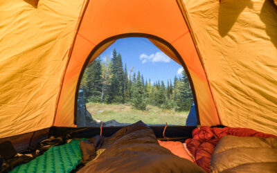 Essential Sleeping Bags for Sustainable Camping Trips