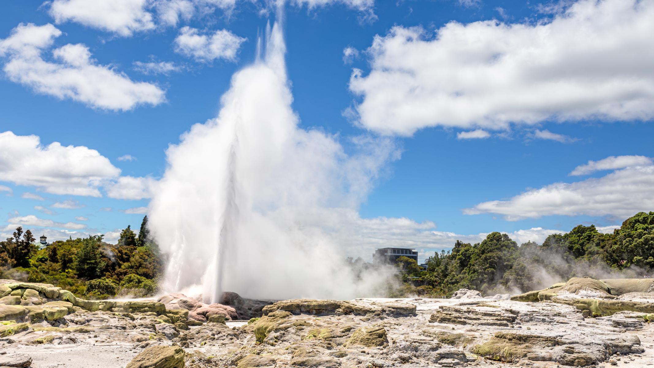 Geyser erupting in Rotorua, New Zealand