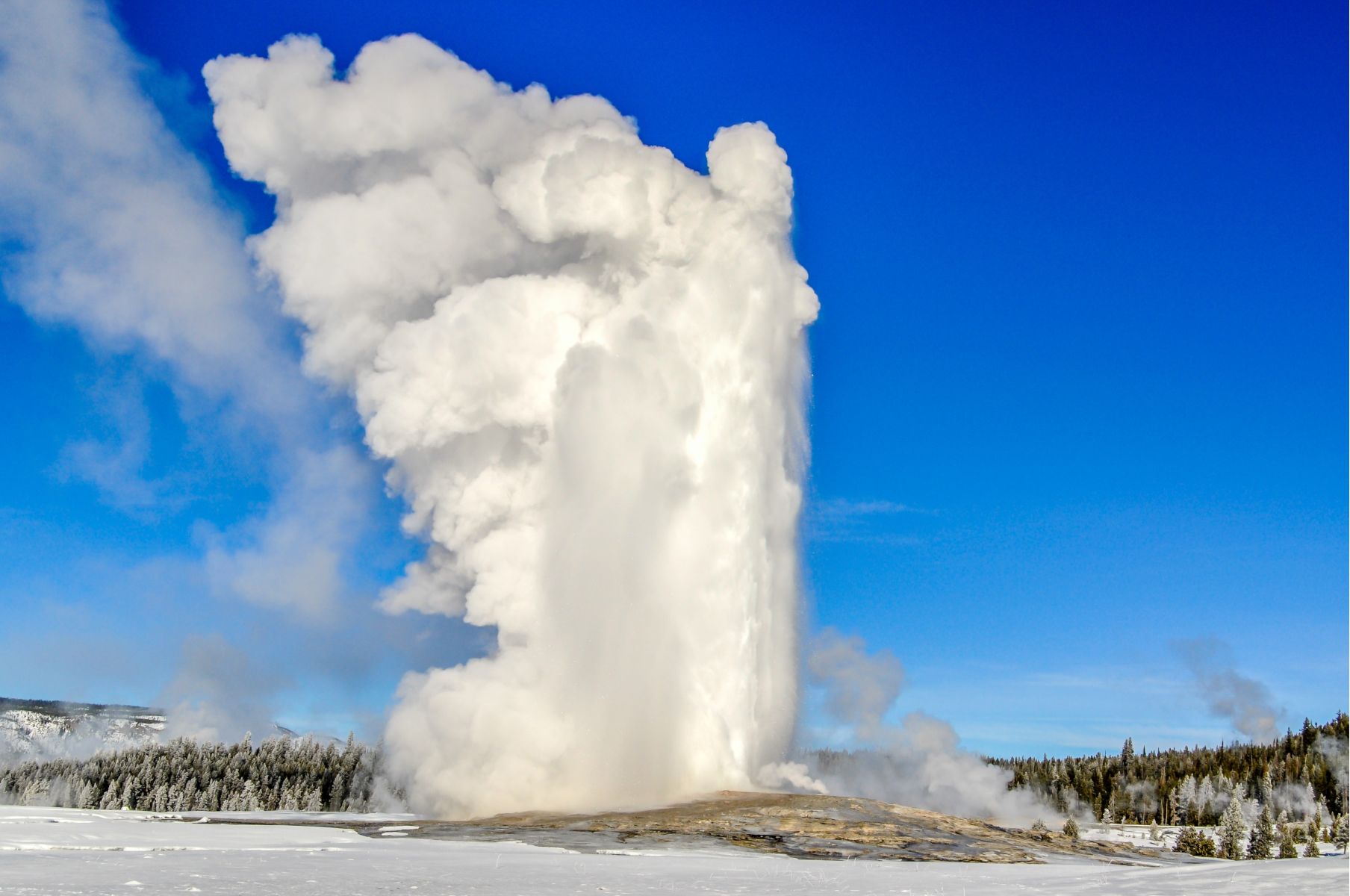 Old Faithful erupting in Yellowstone National Park