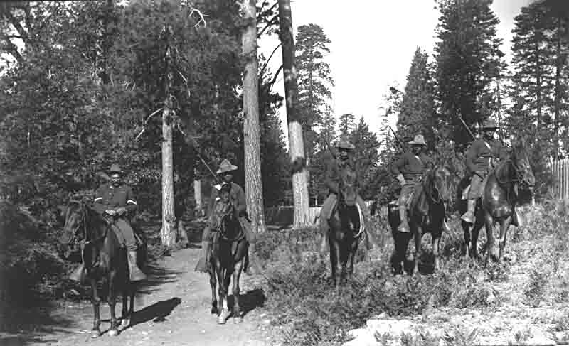 Buffalo Soldiers Riding in the Forest in Yosemite National Park