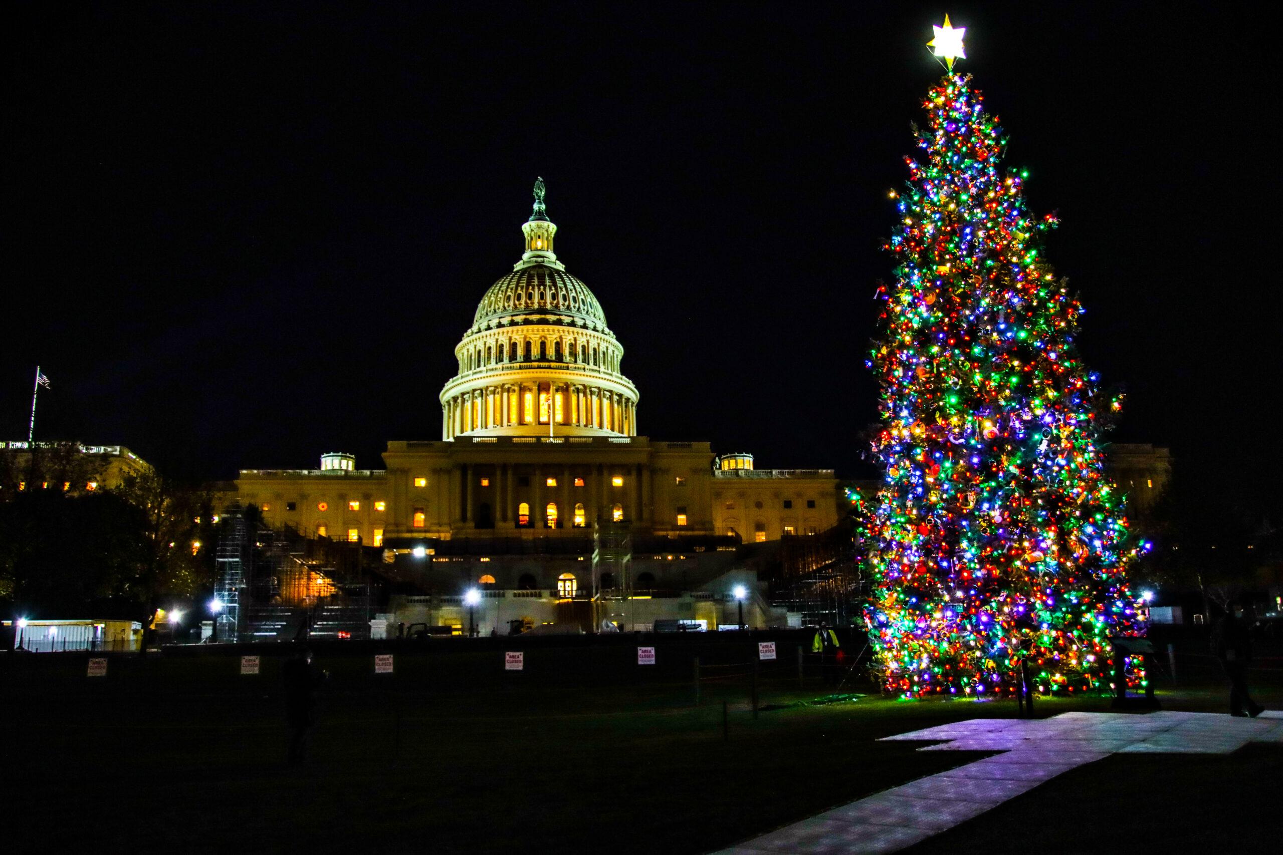 The U.S. Capitol Christmas Tree Lighting Ceremony 2020